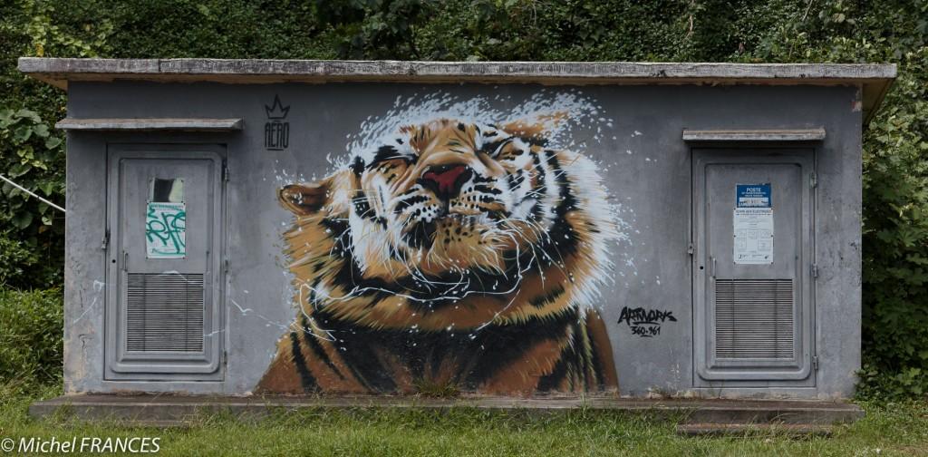 Révélation du dynamisme du street art polynésien.